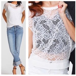 NWT CABI / sheer lace top